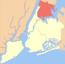 Bronx SEO Company